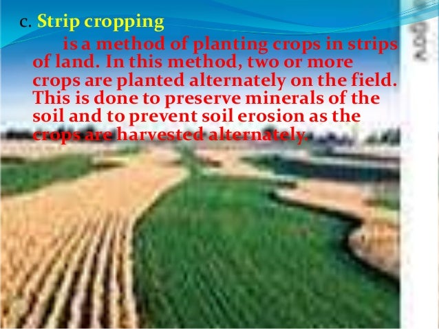 Preventing soil erosion 02 20-12