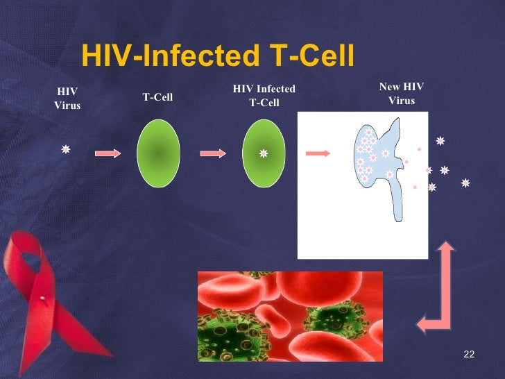 HIV-Infected T-Cell HIV Virus T-Cell HIV Infected T-Cell New HIV Virus