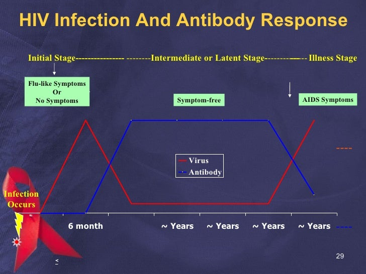 HIV Infection And Antibody Response Infection Occurs AIDS Symptoms Initial Stage---------------- -------- Intermediate or ...