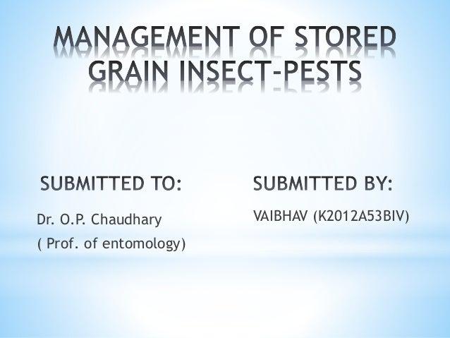 Dr. O.P. Chaudhary ( Prof. of entomology) VAIBHAV (K2012A53BIV)