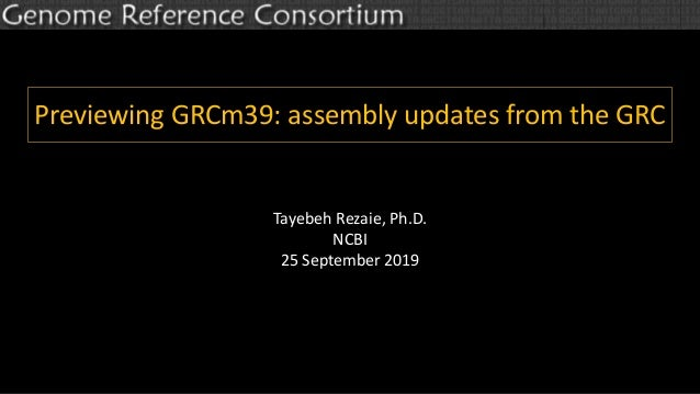 Previewing GRCm39: assembly updates from the GRC Tayebeh Rezaie, Ph.D. NCBI 25 September 2019