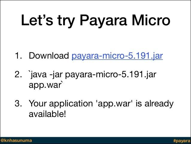 Previewing Payara Platform 5 192
