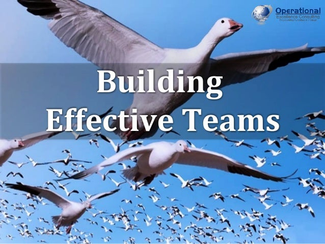 © Operational Excellence Consulting. All rights reserved. © Operational Excellence Consulting. All rights reserved. Buildi...
