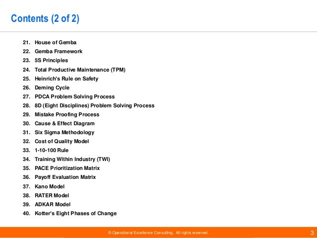Business Performance Improvement Models by Operational Excellence Consulting Slide 3
