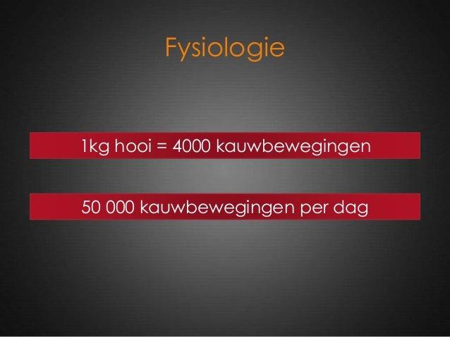 Fysiologie 1kg hooi = 4000 kauwbewegingen 50 000 kauwbewegingen per dag