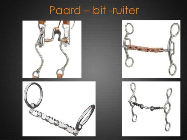 Paard – bit -ruiter