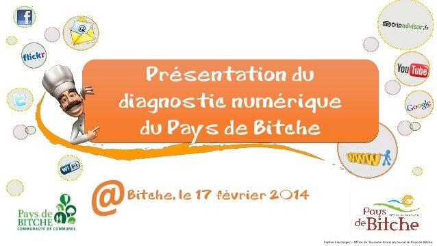 Présentation du diagnostic numérique du Pays de Bitche Bitche, le 17 février 2014 Sophie Ensminger – Office de Tourisme In...