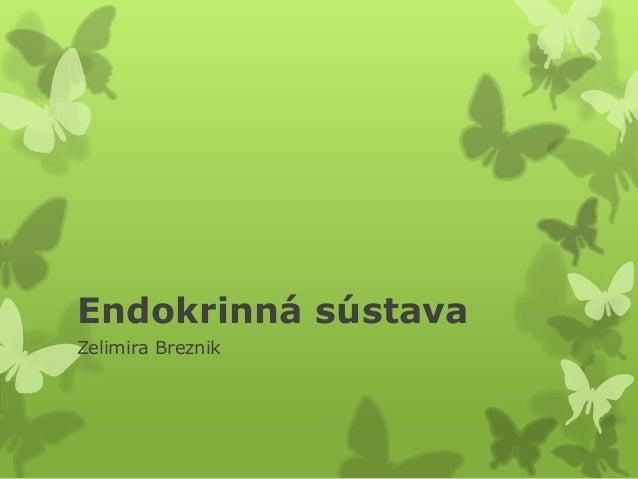Endokrinná sústava Zelimira Breznik