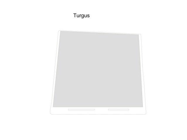 Turgus