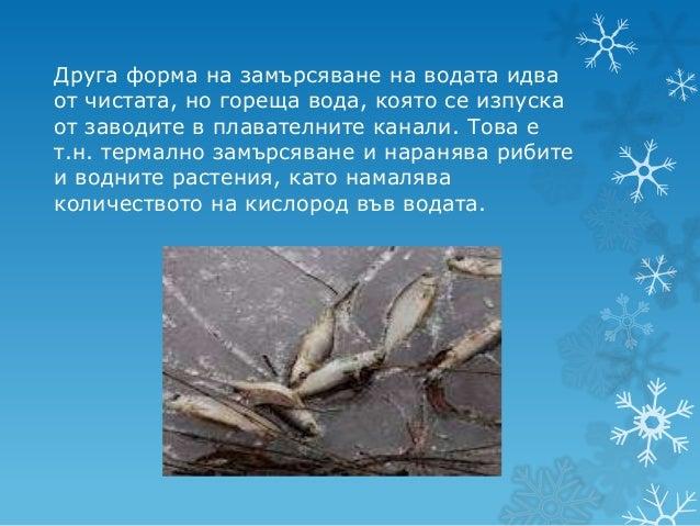Разлетите химикали и масла, водят доедно опустошително водно замърсяване,     унищожаващо водните птици,  черупчестите мек...