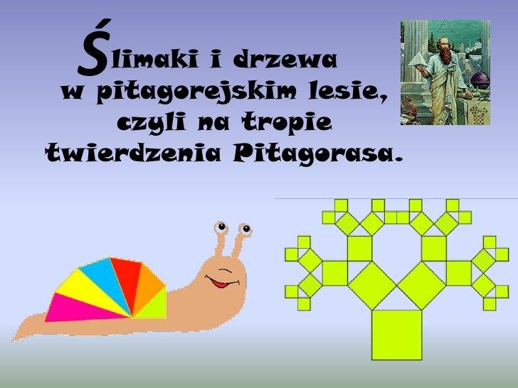 Ś<br />limaki i drzewa <br />wpitagorejskim lesie, czyli na tropie twierdzenia Pitagorasa.<br />