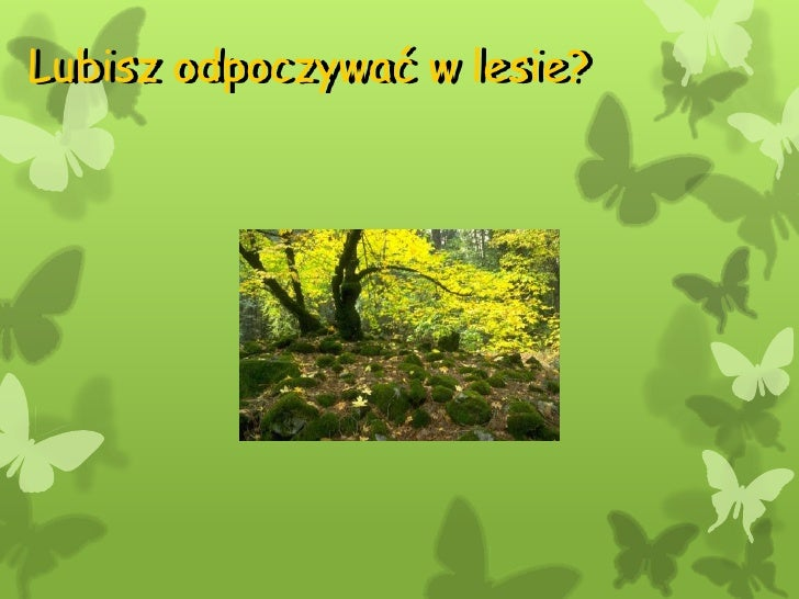Lubisz odpoczywać w lesie?