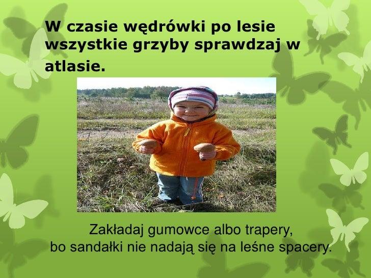W czasie wędrówki po lesiewszystkie grzyby sprawdzaj watlasie.      Zakładaj gumowce albo trapery,bo sandałki nie nadają s...