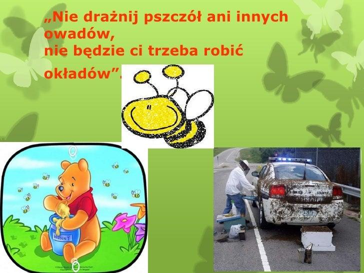"""""""Nie drażnij pszczół ani innychowadów,nie będzie ci trzeba robićokładów""""."""