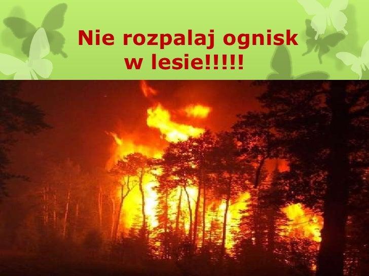 Nie rozpalaj ognisk    w lesie!!!!!