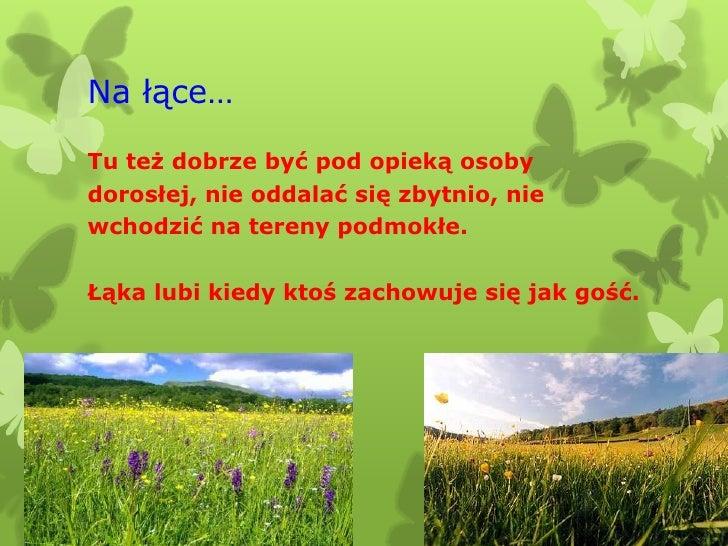 Na łące…Tu też dobrze być pod opieką osobydorosłej, nie oddalać się zbytnio, niewchodzić na tereny podmokłe.Łąka lubi kied...