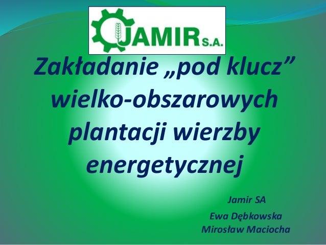 """Zakładanie """"pod klucz"""" wielko-obszarowych plantacji wierzby energetycznej Jamir SA Ewa Dębkowska Mirosław Maciocha"""