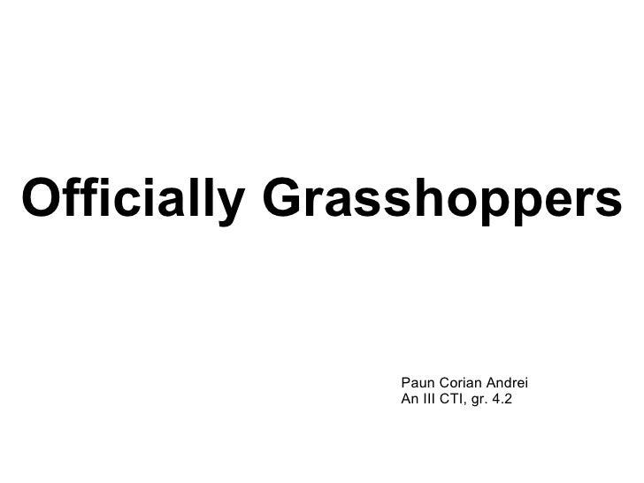 Officially Grasshoppers Paun Corian Andrei An III CTI, gr. 4.2