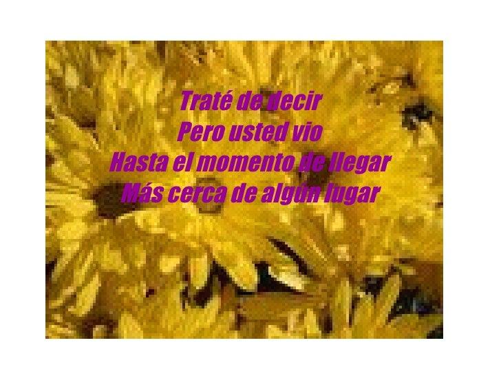 Letra de Musica em Espanhol - Pricila Slide 2