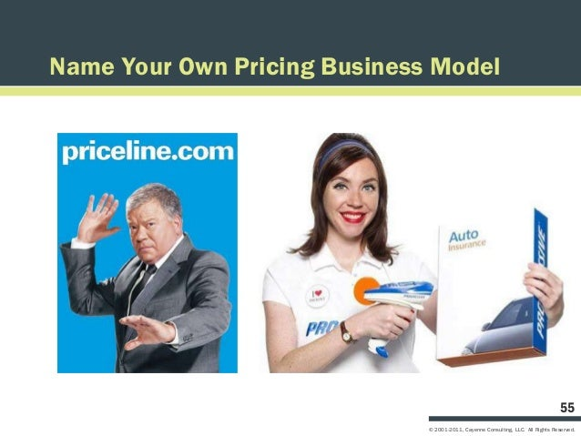 Name Your Own Pricing Business Model                                                                                  55  ...