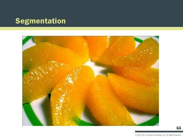 Segmentation                                                                   64               © 2001-2011, Cayenne Consu...