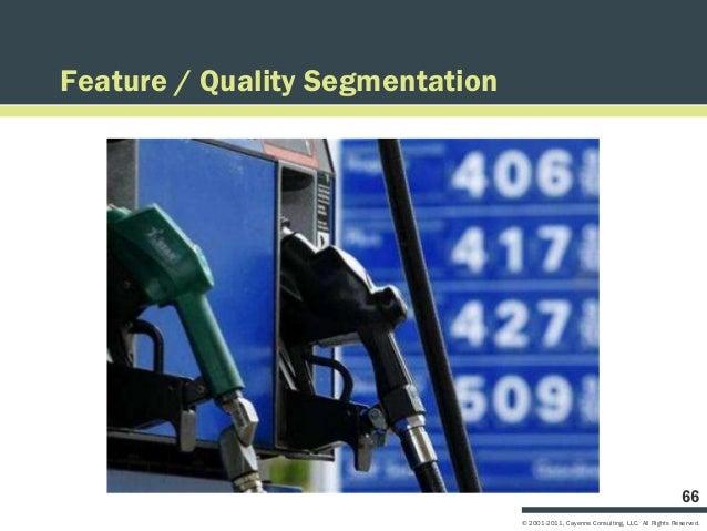 Feature / Quality Segmentation                                                                                     66     ...