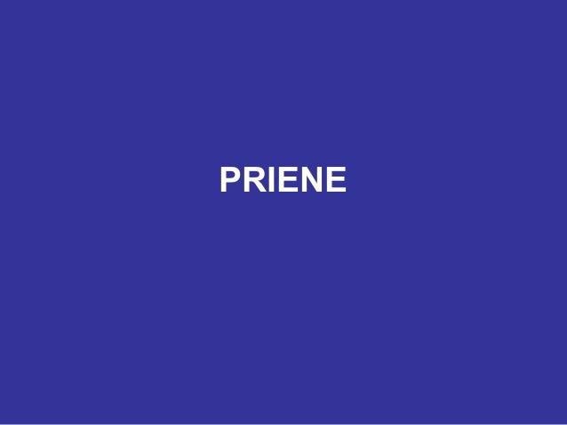 PRIENE
