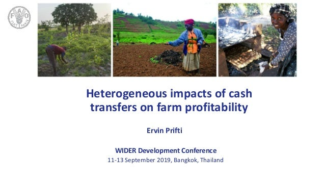 TITLE Heterogeneous impacts of cash transfers on farm profitability Ervin Prifti WIDER Development Conference 11-13 Septem...
