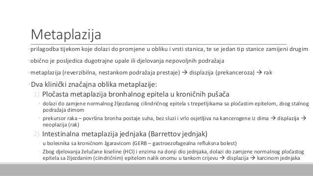 Metaplazija •prilagodba tijekom koje dolazi do promjene u obliku i vrsti stanica, te se jedan tip stanice zamijeni drugim ...