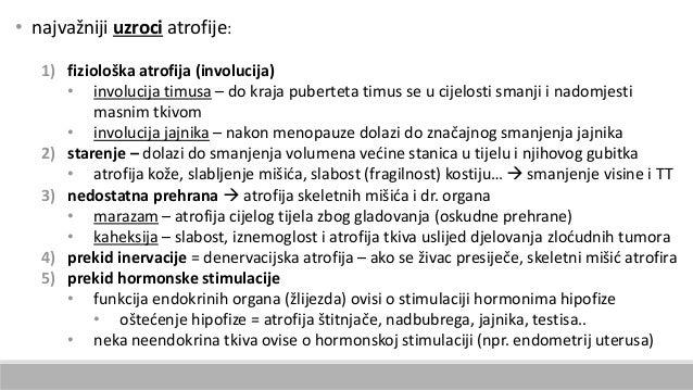 • najvažniji uzroci atrofije: 1) fiziološka atrofija (involucija) • involucija timusa – do kraja puberteta timus se u cije...