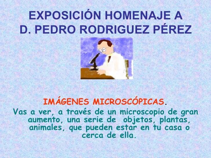 EXPOSICIÓN HOMENAJE A D. PEDRO RODRIGUEZ PÉREZ       IMÁGENES MICROSCÓPICAS.Vas a ver, a través de un microscopio de gran ...