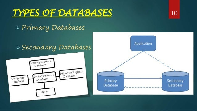 primary-and-secondary-databases-ppt-by-puneet-kulyana-10-638  Examples Of Form In A Database on access student, what is, er diagram, flat file, data dictionary, table structure,