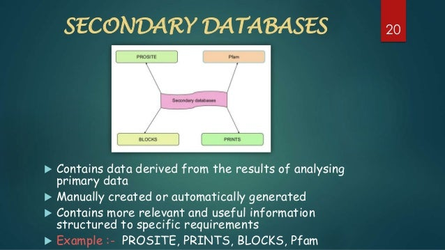 primary and secondary databases ppt by puneet kulyana
