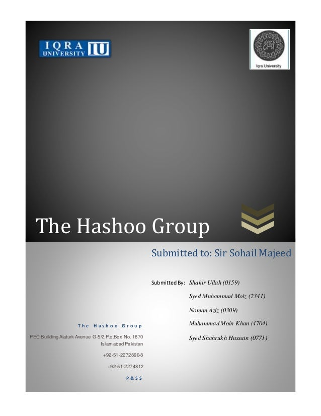 Hashoo Group Primary data report P&SS