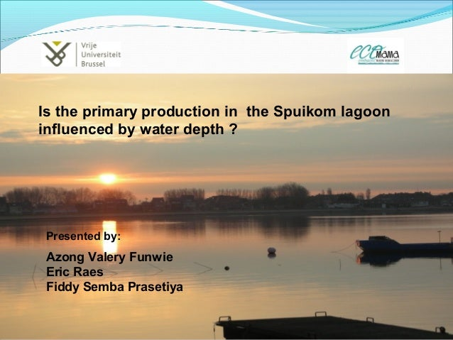 Azong Valery Funwie Eric Raes Fiddy Semba Prasetiya Is the primary production in the Spuikom lagoon influenced by water de...