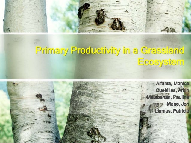 Primary Productivity in a Grassland Ecosystem Alfante, Monica Cuebillas, Arkin Malabanan, Pauline Mane, Jon Llamas, Patric...