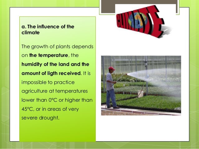 a. The influence of the climate The growth of plants depends on the temperature, the humidity of the land and the amount o...