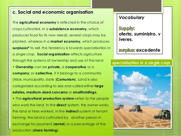 c. Social and economic organisation The agricultural economy is reflected in the choice of crops cultivated. In a subsiste...