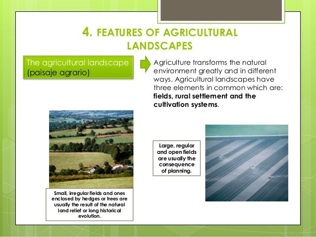 4. FEATURES OF AGRICULTURAL LANDSCAPES The agricultural landscape (paisaje agrario) Agriculture transforms the natural env...