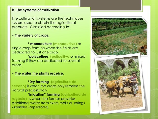 b. The systems of cultivation The cultivation systems are the techniques system used to obtain the agricultural products. ...