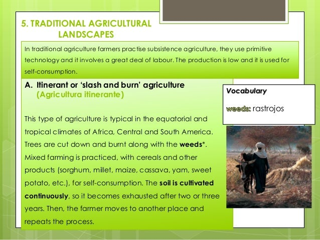 5. TRADITIONAL AGRICULTURAL LANDSCAPES In traditional agriculture farmers practise subsistence agriculture, they use primi...
