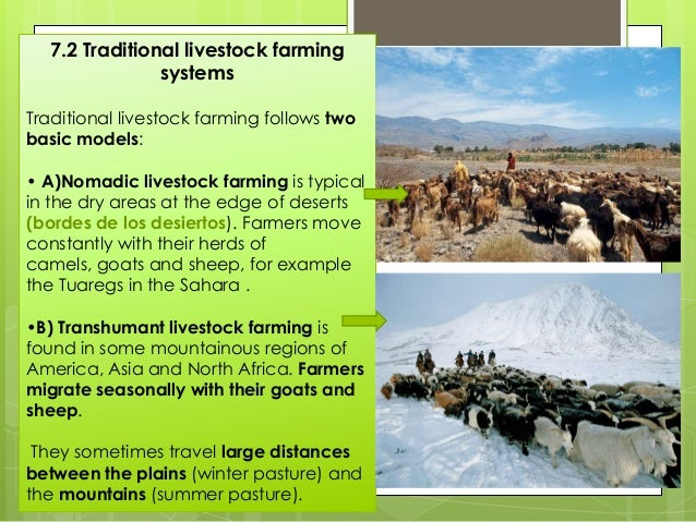 7.3 Market livestock farming systems Market livestock farming is characteristic of developed areas with temperate climates...