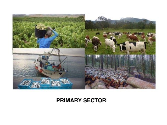 list of primary industries