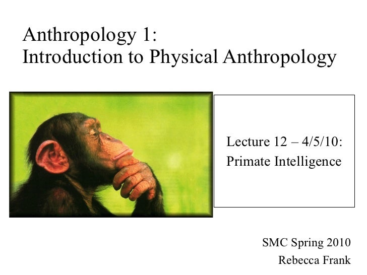 Anthropology 1: Introduction to Physical Anthropology Lecture 12 – 4/5/10: Primate Intelligence SMC Spring 2010 Rebecca Fr...