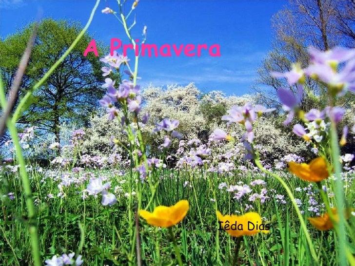 A Primavera Iêda Dias
