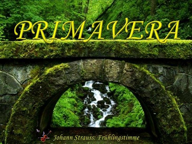 PRIMAVERA<br />Johann Strauss: Frühlingstimme<br />