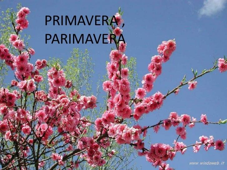 PRIMAVERA ,PARIMAVERA