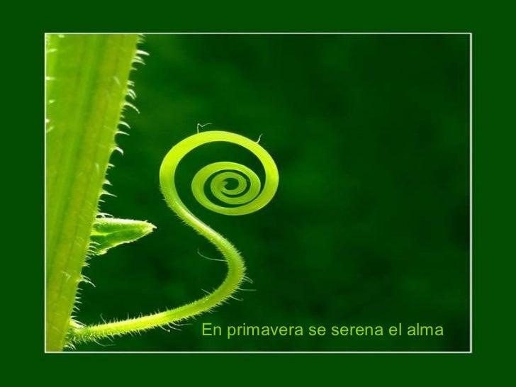En primavera se serena el alma