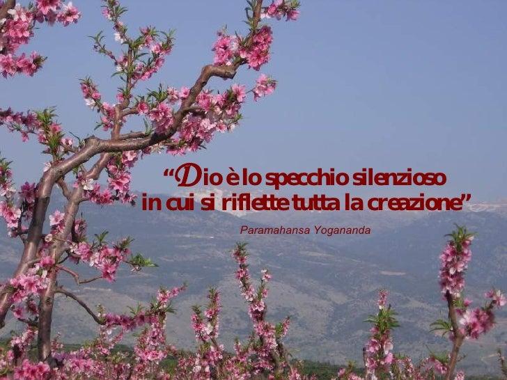 """"""" D io è lo specchio silenzioso  in cui si riflette tutta la creazione"""" Paramahansa Yogananda"""