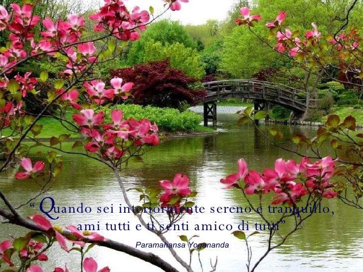 """"""" Q uando sei interiormente sereno e tranquillo, ami tutti e ti senti amico di tutti"""" Paramahansa Yogananda"""
